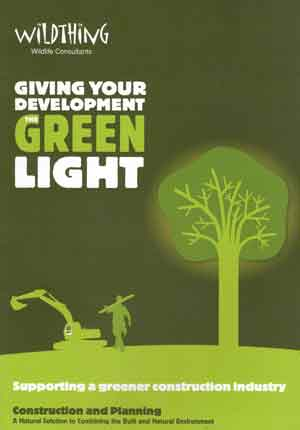 Giving the Green Light to Your Development